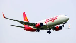 SpiceJet to launch 20 new flights